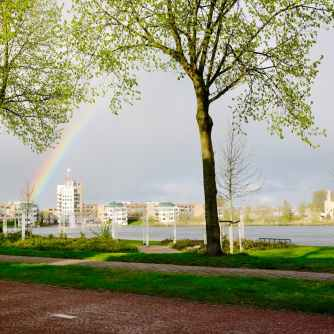 Photo by Matthias Zomer on Pexels.com